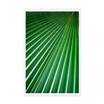 Palm Leaf Mini Poster Print
