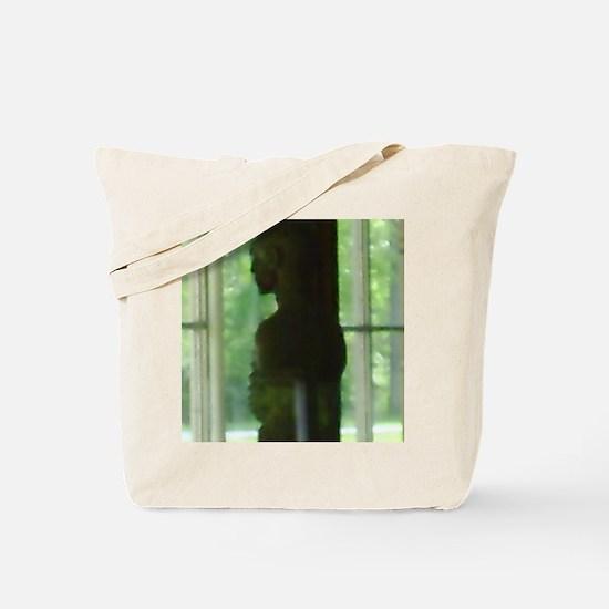 PICT0081 Tote Bag