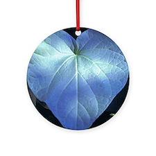 ockanum Heart ~ Copyrite Round Ornament
