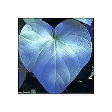 "ockanum Heart ~ Copyrite Square Sticker 3"" x 3"""
