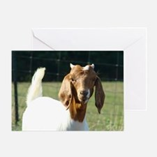 Goat(9) Greeting Card