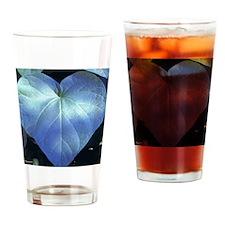ockanum Heart ~ Copyrite Drinking Glass