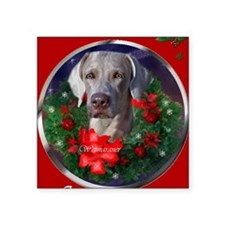 "weimaranerchristmascard Square Sticker 3"" x 3"""