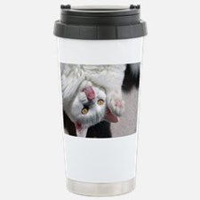 silly_cat_mini Stainless Steel Travel Mug