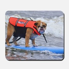 Dozer at Dog Beach Purina Surf Contest Mousepad