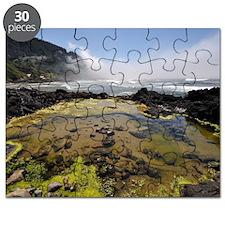 Tide Pool Oregon Puzzle