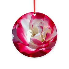 dk_pink_rose_mpad Round Ornament