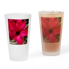 pink_lily_calendar Drinking Glass