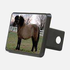 pony_Lg_framed Hitch Cover