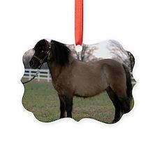 pony_Lg_framed Ornament
