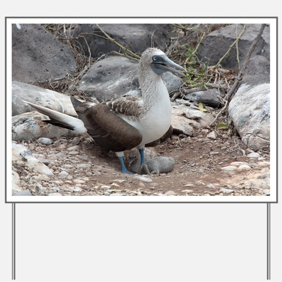 Blue-footed Booby with Baby Galapagos Yard Sign