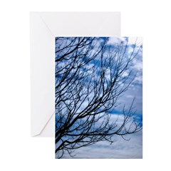 photoart Greeting Cards (Pk of 10)
