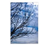 photoart Postcards (Package of 8)