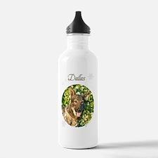 dallas-stocking Water Bottle