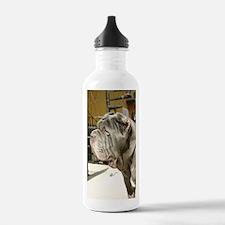 IMG_9265 Water Bottle