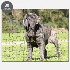 ors cal Puzzle