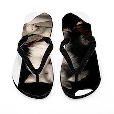 cat_443_iphone_case Flip Flops
