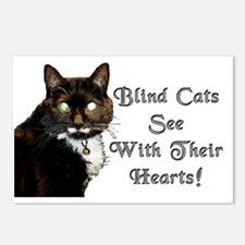 blind cat3 copy Postcards (Package of 8)