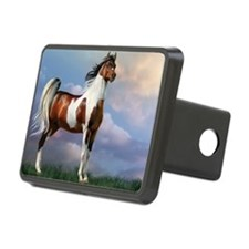 Sky King Of The Hill Hitch Cover