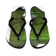 gc_443_iphone_case Flip Flops