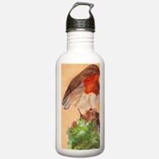 091130_Robin_ADJ_7x5b  Water Bottle
