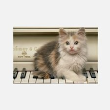 piano kitten panel print Rectangle Magnet