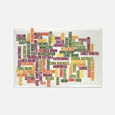 ConstellationsWordle Rectangle Magnet