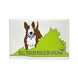 Bull terrier Gifts