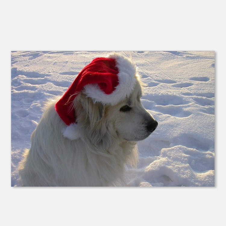Great Pyrenees with Santa Postcards (Package of 8)