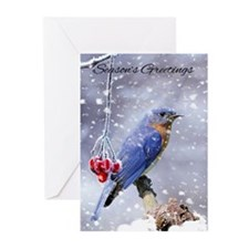 Bluebird In The Snow Greeting Cards (Pk Of 20)