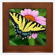 Swallowtail Framed Tile