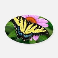 Swallowtail Oval Car Magnet