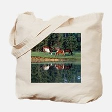 reflection_button Tote Bag