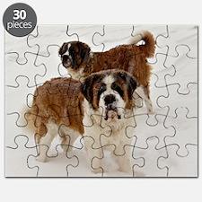 dodgecudasnow Puzzle