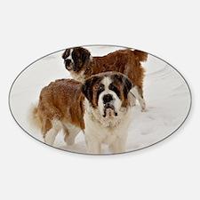 dodgecudasnow Sticker (Oval)
