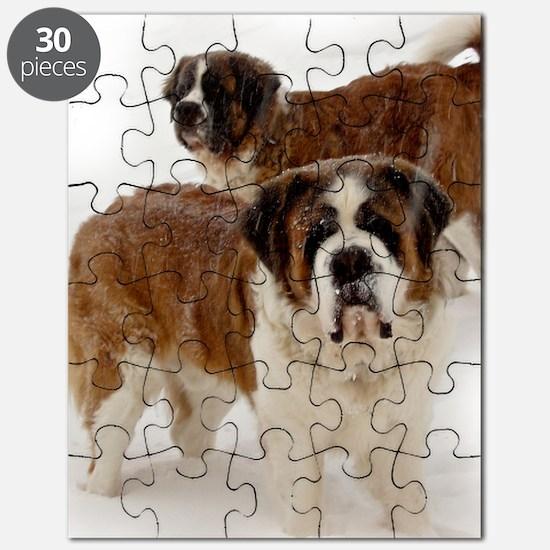 teeshirt Puzzle