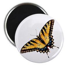 tigerSwallowtail45 Magnet