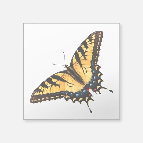 "tigerSwallowtail45 Square Sticker 3"" x 3"""