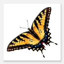 "tigerSwallowtail45 Square Car Magnet 3"" x 3"""