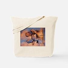LumAb 1 Tote Bag