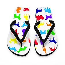 Rainbow.eps Flip Flops