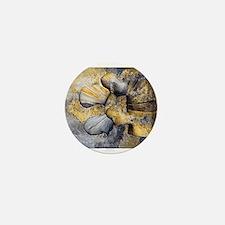 Lumbar Stone Mini Button