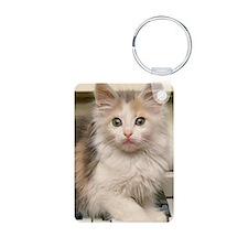 Piano kitty 3G hard case Keychains