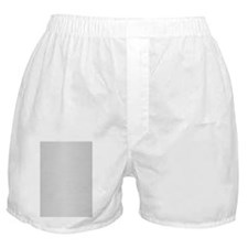 BrushAlum4GSlide Boxer Shorts