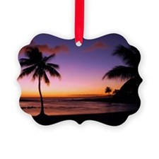 poipu_01 Ornament