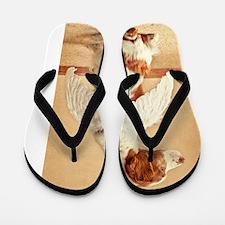 brittany angel clothing Flip Flops