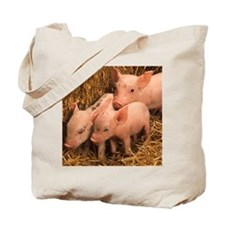 three piglets Tote Bag