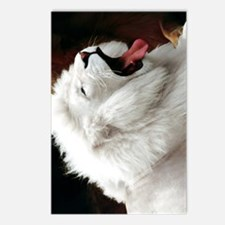 White Lion journal Postcards (Package of 8)