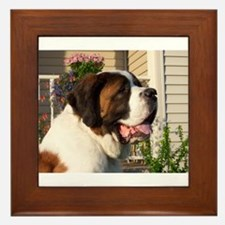 Pretty as a Picture Saint Ber Framed Tile