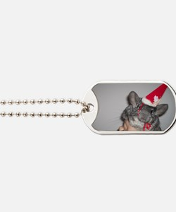 Holiday Chinchilla Dog Tags